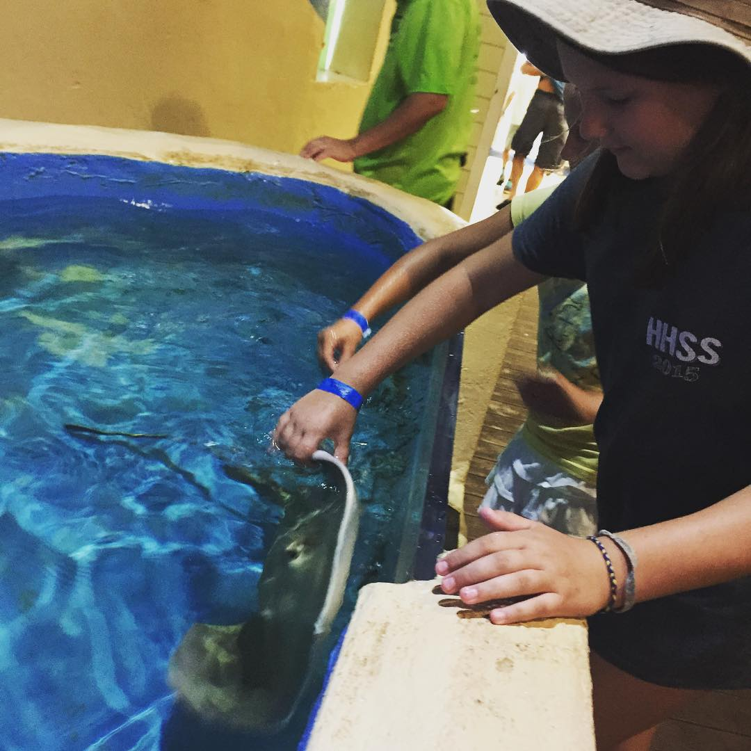 Petting the stingrays!