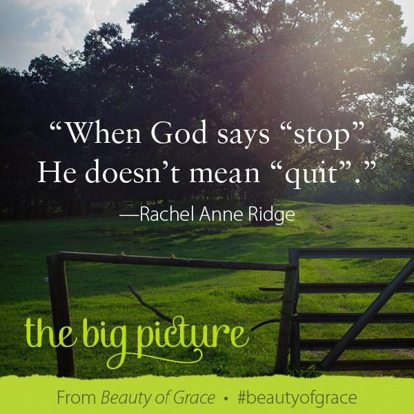 Rachel Anne Ridge The Beauty of Grace