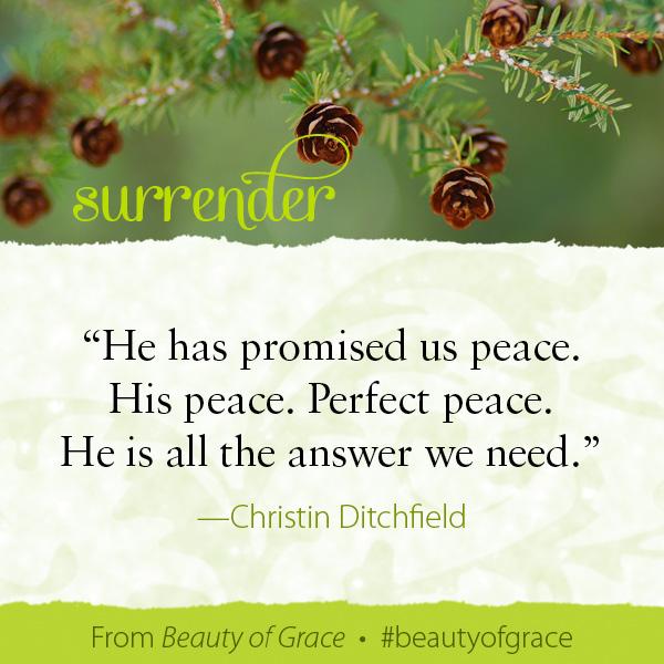 Christin Ditchfield The Beauty of Grace