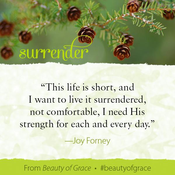 Joy Forney The Beauty of Grace