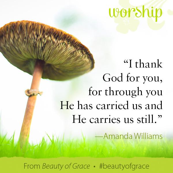Amanda Williams The Beauty of Grace